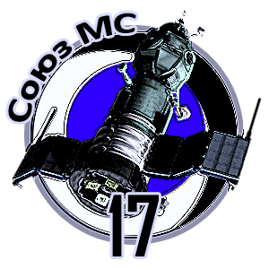 Soyuz MS-17 Patch